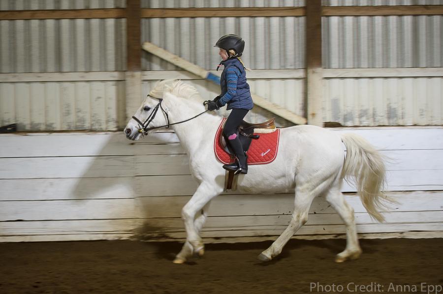 Anna_Epp_Equestrian-17